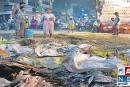 7.34 करोड़ रुपए का घोटाला मुजफ्फरपुर नगर निगम में पकड़ा गया